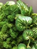 kleine Mooskugel grün, mit Kunstblättern